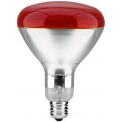 Fierbator Electric Albatros Aquaria, 1.7L, 2200W